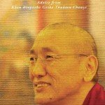 Daily Reflections – Advice from Khen Rinpoche Geshe Thubthen Chonyi