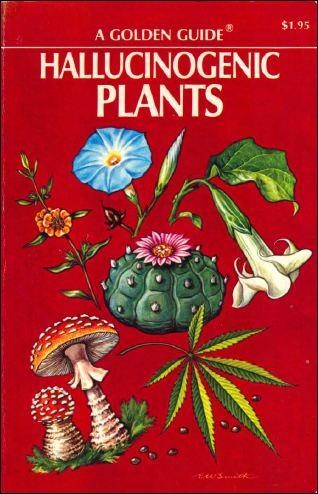 Hallucinogenic Plants – A Golden Guide