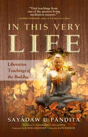 In this very Life – The Liberation Teachings by the Buddha
