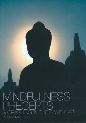 Mindfulness Precepts & Crashing in the Same Car by Ajahn Jayasaro