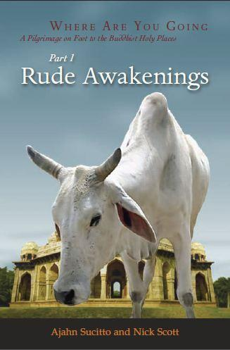 Rude Awakenings and Great Patient One by Ajahn Sucitto and Nick Scott