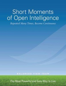 Short Moments of Open Intelligence free ebook