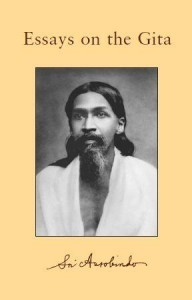 Sri Aurobindo VOL 19 Essays On The Gita free PDF ebook