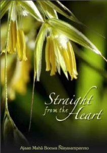Straight From the Heart pdf Ebook on Buddhism