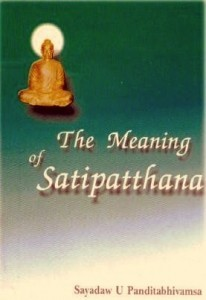 The Meaning of Satipatthana ebook